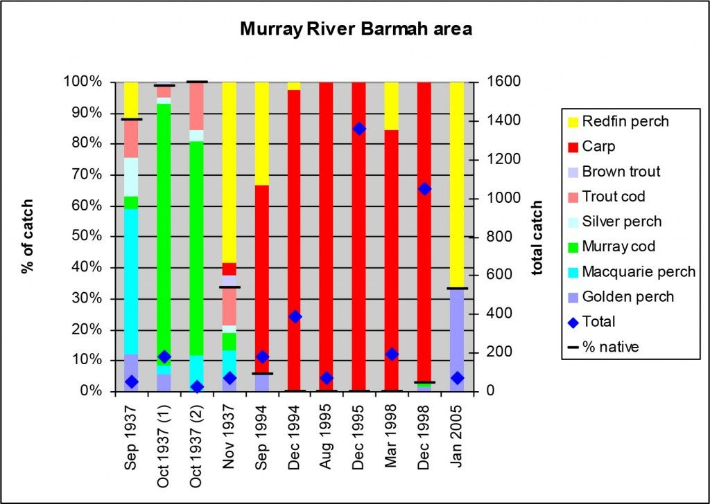 Figure 6 4 Percentage contribution by species to total catch (excluding small species). The plot compares data collected from several locations in the Barmah area by J. A. Tubb in 1937 (reported in Cadwallader 1977) with data from 1994 to 2005 in the Murray River in the same region and shows a significant decrease in the proportion of native fish but a large increase in total catch attributed to the presence of carp and redfin perch.