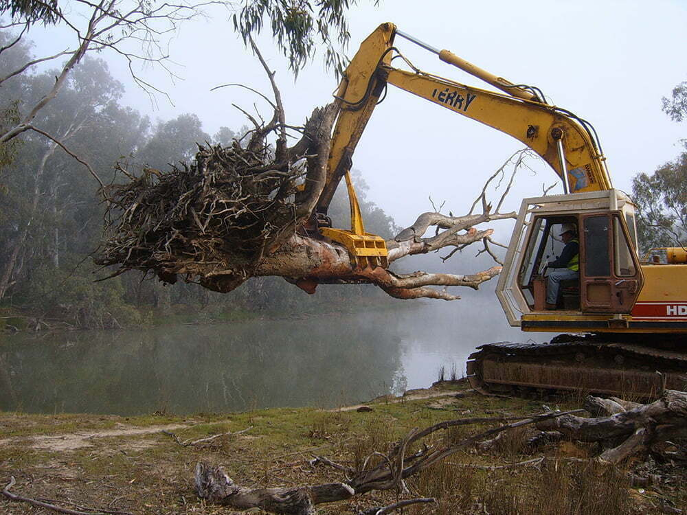 Large snag being installed on the Murray River. Pic courtesy of Martin Casey