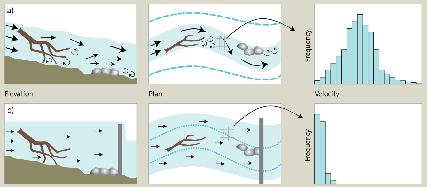 Figure 1: An illustration of hydrodynamic diversity and the impact of a weir pool in a river