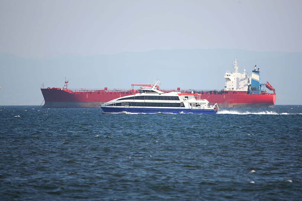 Ferries and large ships: more than just a navigational hazard?