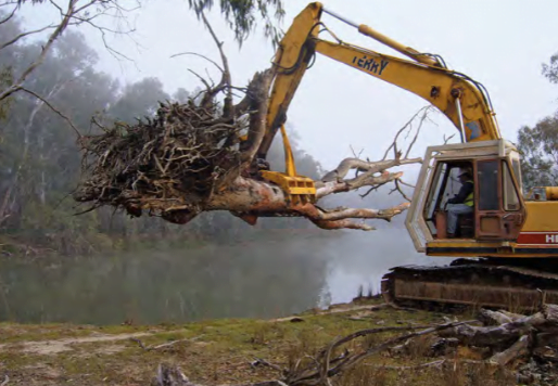 Instream woody habitat works being conducted in the Murray River.