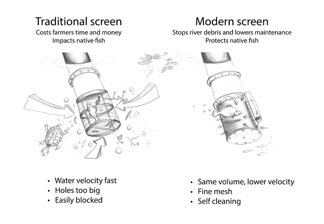 Diagram showing Old vs new cylinder fish screens